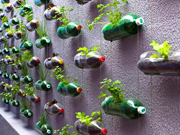 Ghivece de grădină din pet-uri