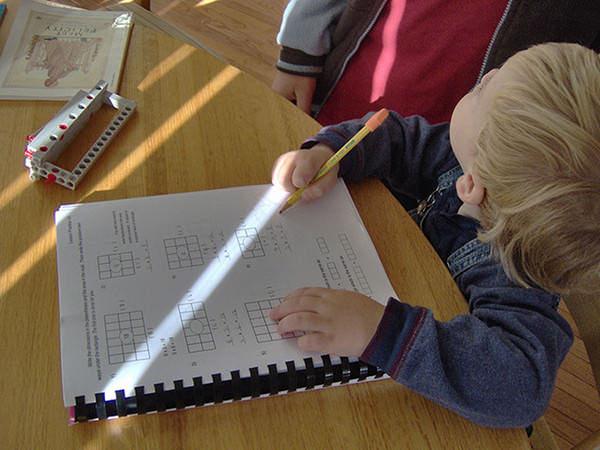 O româncă mutată în SUA a ales homeschooling