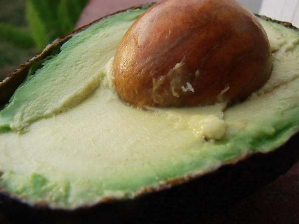 Cum gătim avocado pentru toată familia