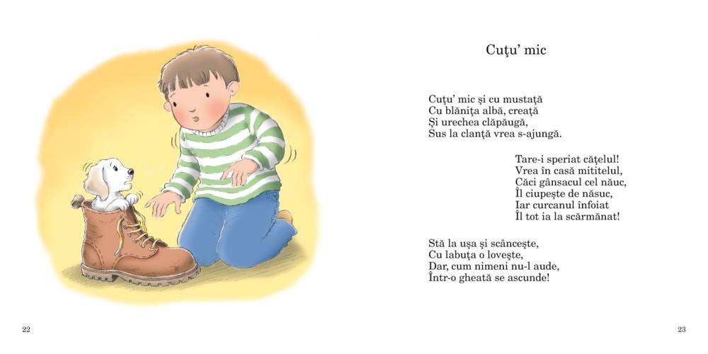 carte copii rime cu codita
