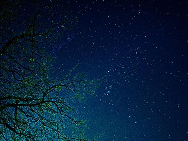 Stele căzătoare iarna aceasta – Geminidele