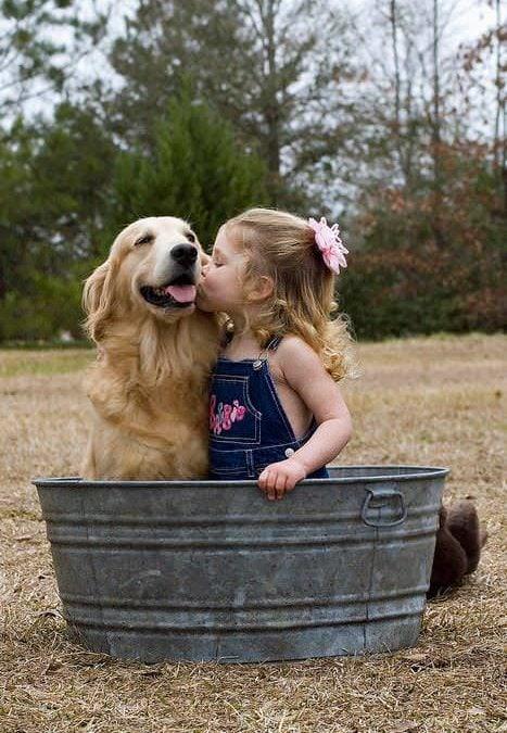 Recomandările de joi activități pentru copii și părinți (26 – 27 aprilie)