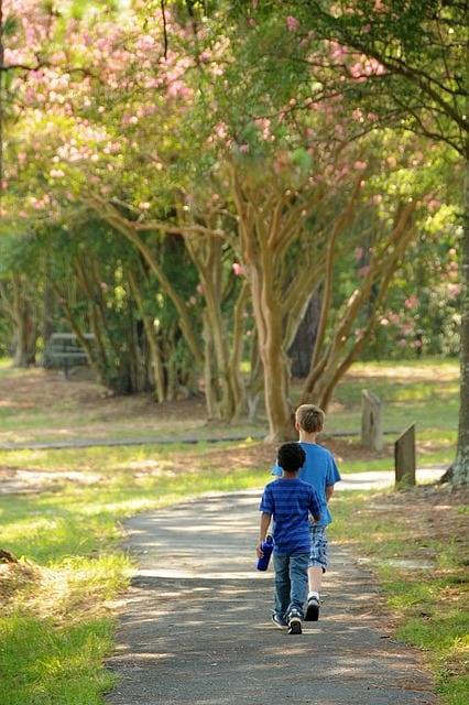 Studiu: copiii petrec prea puțin timp în natură