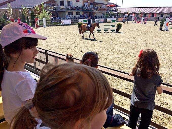 salonul calului