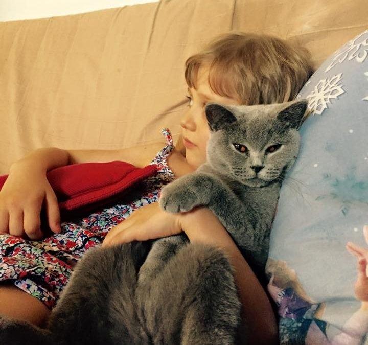 10 motive să spui DA unui animal de companie pentru copilul tău