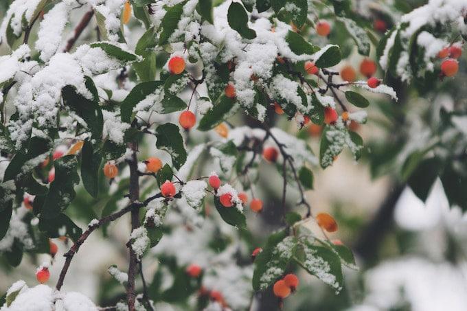 """Trei obiceiuri pe care le avem, în familie, pentru a trece cu bine de răceli și alte boli """"de sezon"""""""