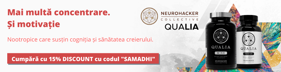 Neurohacker Collective Qualia Mind & Focus