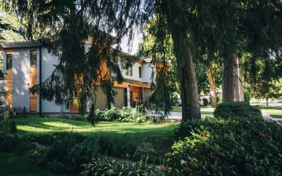 7 lucruri de știut despre mutarea la casă